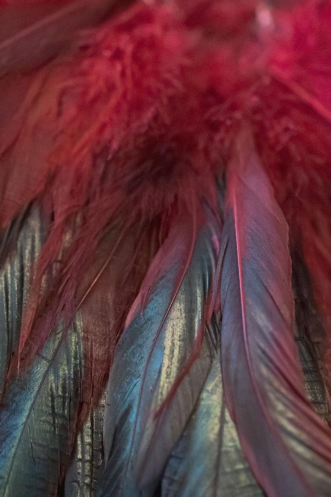 Plumes rouges de la plumassière parisienne Béatrice Bost-Le-Mouël