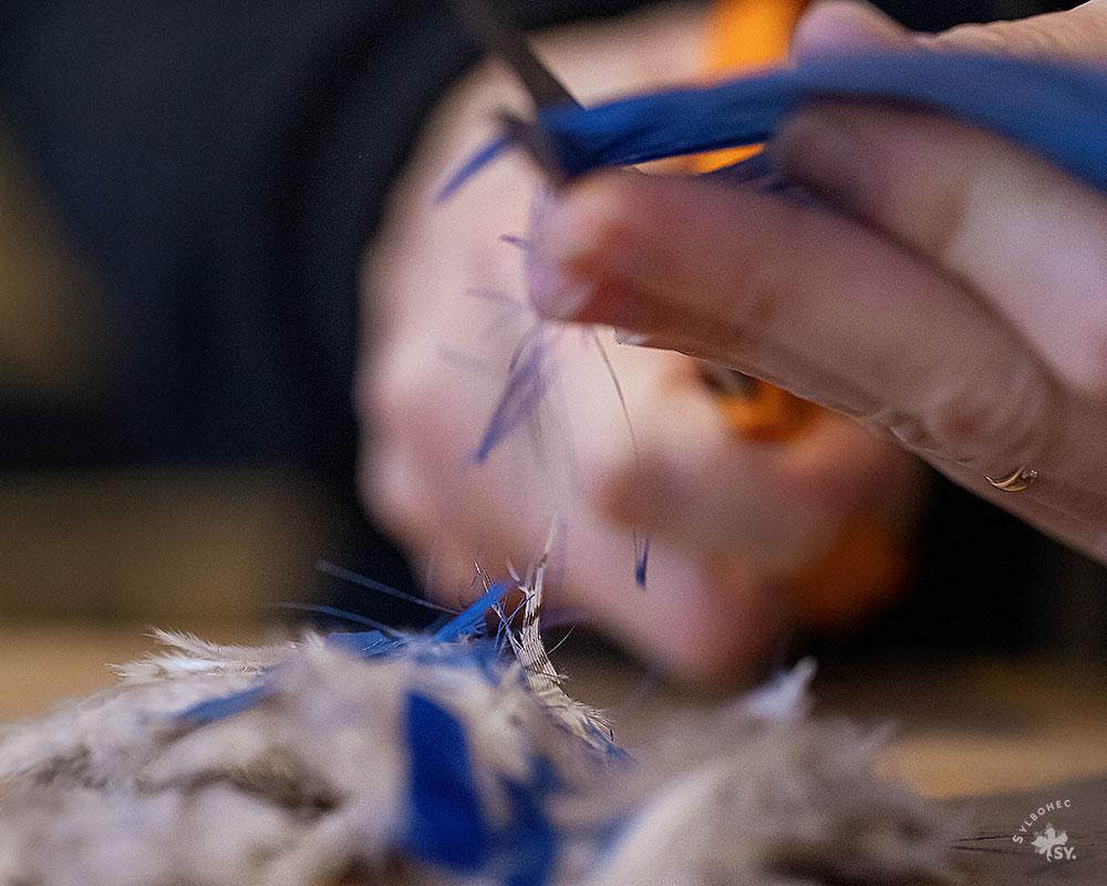 Geste de coupe de plumes bleues par la plumassière parisienne Plumavera