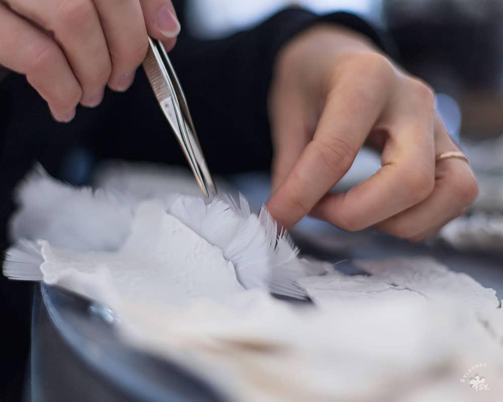 Geste de coupe de plumes blanches