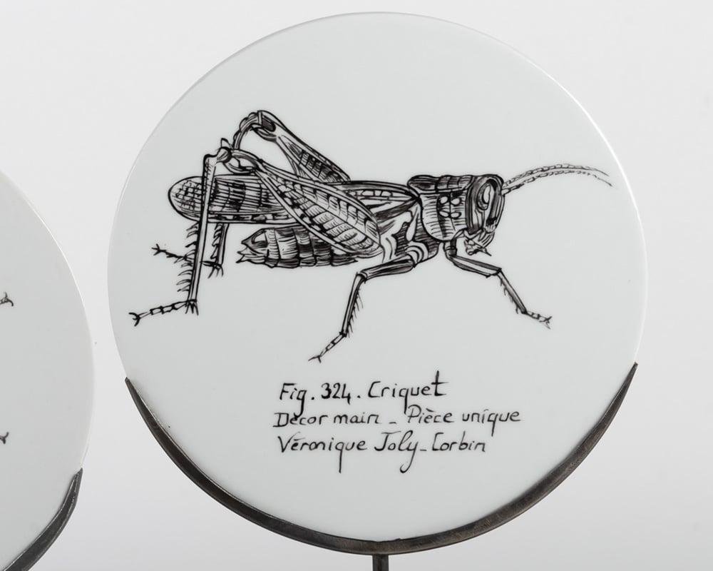 Dessin de Criquet Fig. 324 sur assiette de porcelaine - Décor à la main et à la plume - Pièce unique de Véronique Joly-Corbin