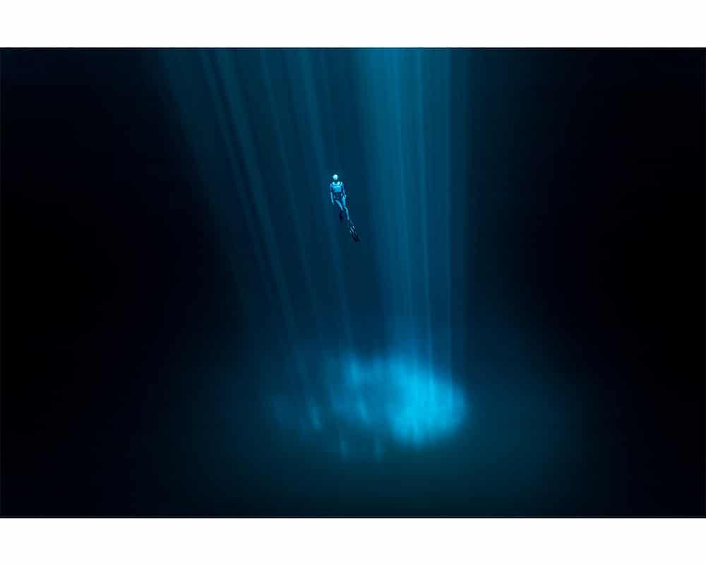 SPOTLIGHT - Photographie sous-marine de Fabrice Guérin