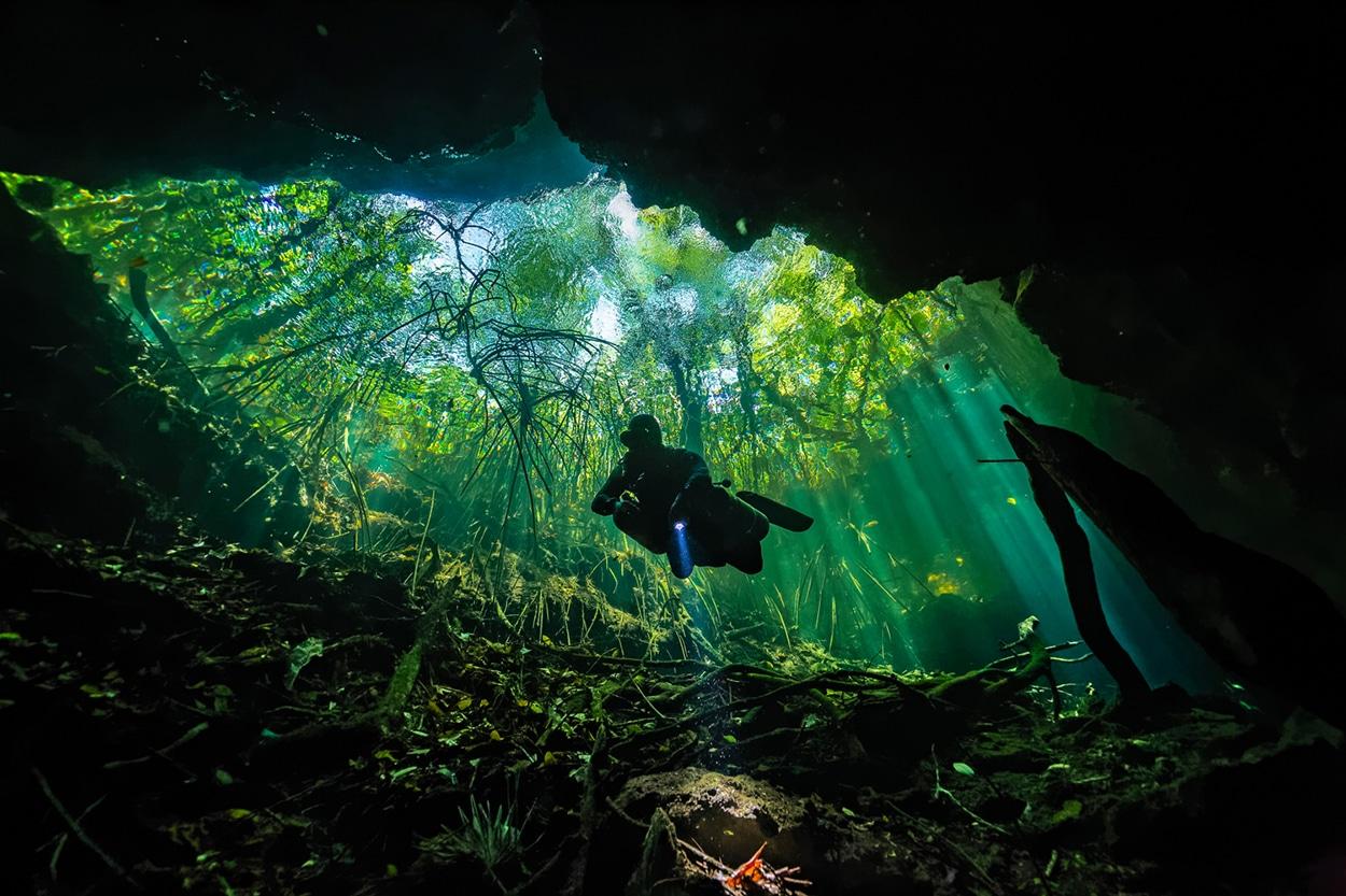 ESMERALDA - Photographie sous-marine de Fabrice Guérin