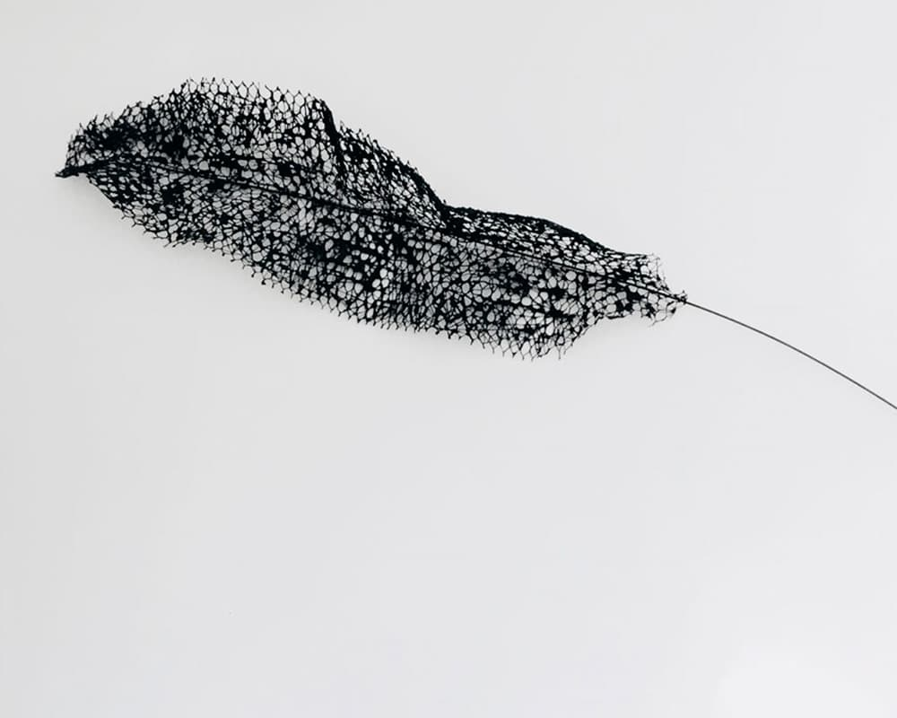 """Sculpture murale """"Plume"""" noire en dentelle de neptune de Natalie Sanzache"""